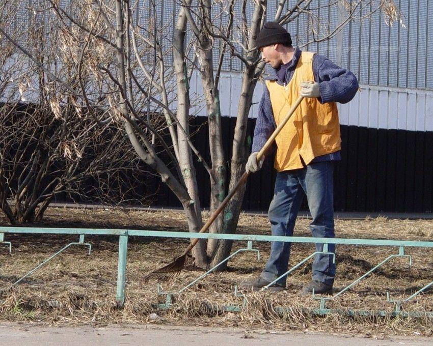 поиск работы только в городе славгороде дворник одним преимуществ