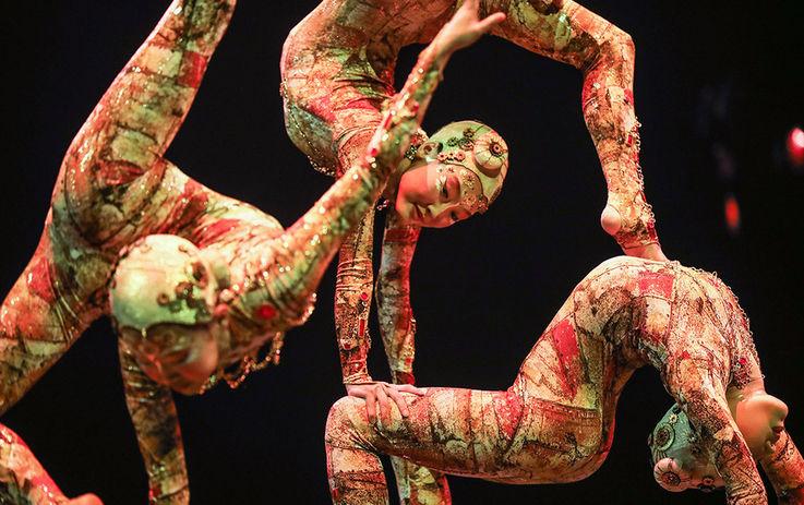 Пандемия коронавируса поставила на грань банкротства Cirque du Soleil
