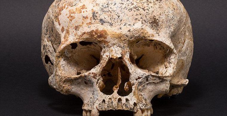 Археологи воссоздали портрет девушки, погибшей 3700 лет назад