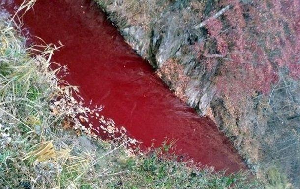 Река в Южной Корее окрасилась кровью десятков тысяч туш свиней (ФОТО)