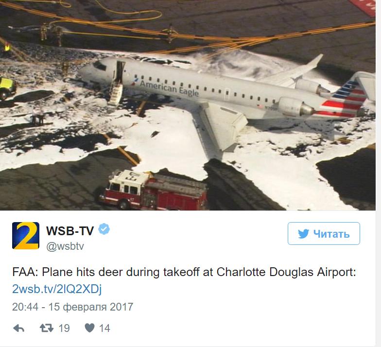 Самолет врезался в оленя на взлете в аэропорту Северной Каролины