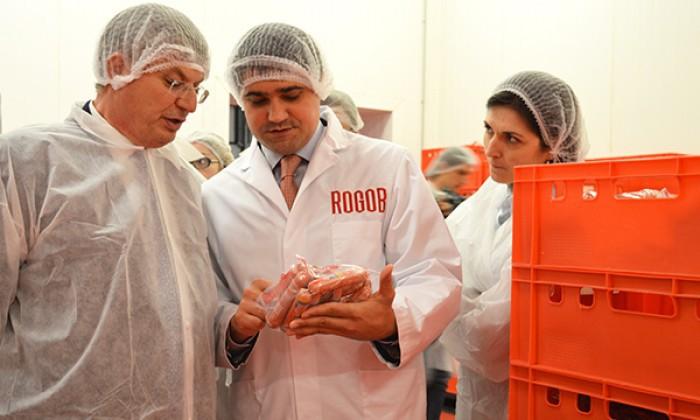 rogob, торговая марка года