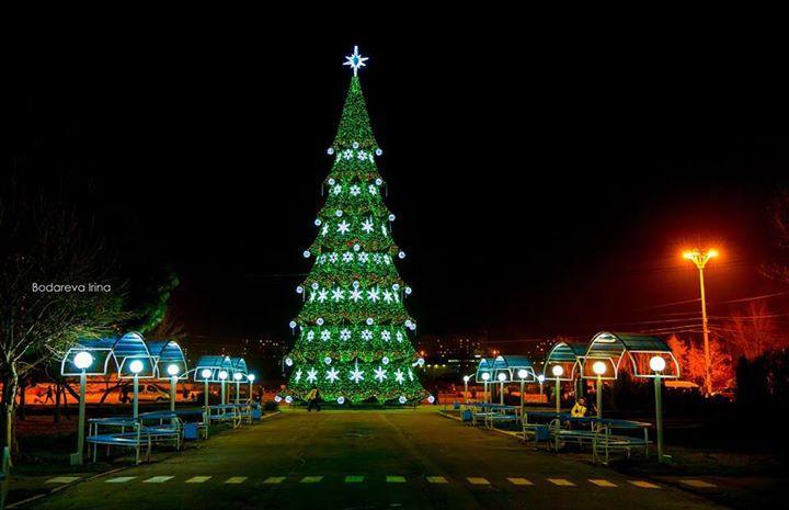 новый год, елка в кишиневе