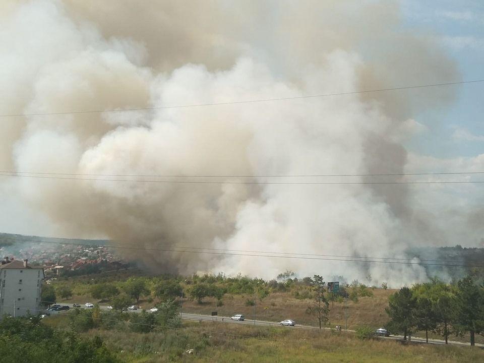 Пожар недалеко от Думбравы: огонь приближается к домам