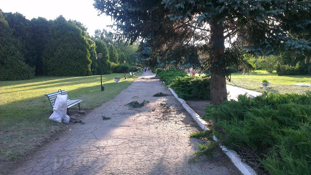 мусор, ботанический сад
