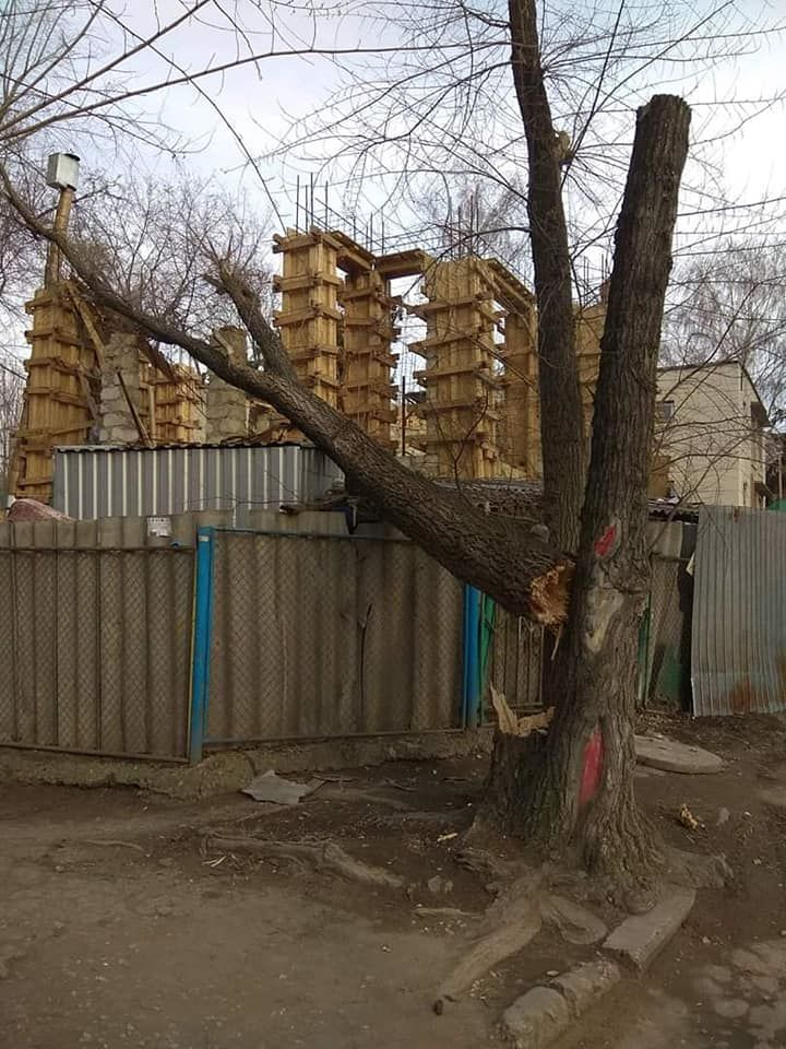 На строящуюся во дворе детсада церковь на Рышкановке упало дерево