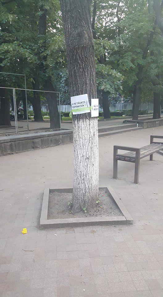 В Кишиневе граждане защищают деревья от Киртоакэ
