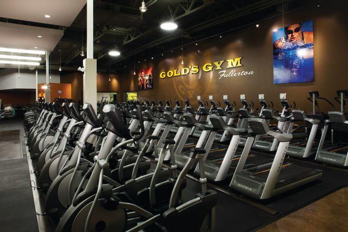golds gym fitness equipment - 960×640