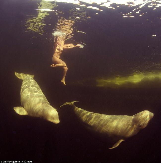 Парни дрочат обнаженная девушка женщина под водой смотреть онлайн порно