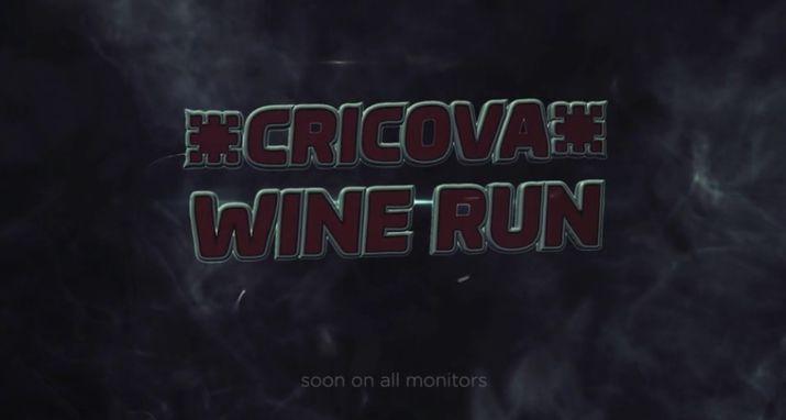 трейлер wine run, wine run