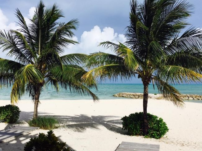 bahamas, ionel istrati