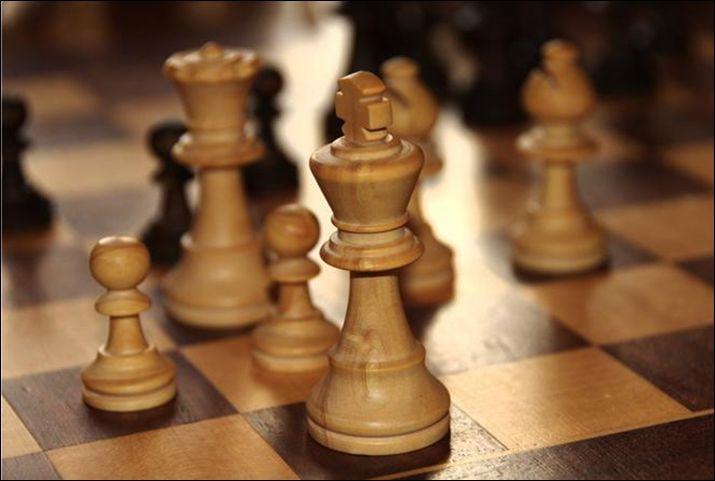шахматистка, золотая медаль