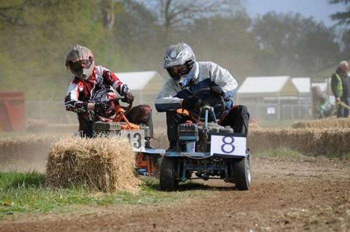 гонки на газонокосилках