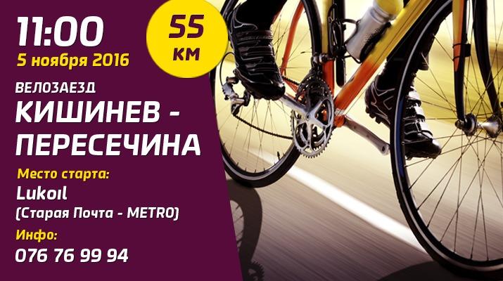 велозаезд, sporter bike