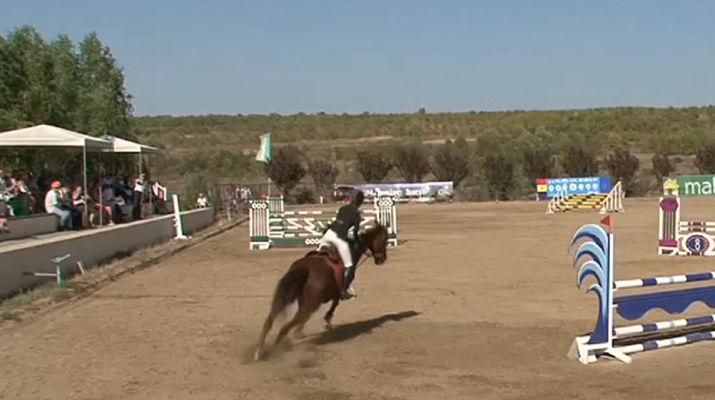 конкуро, конный спорт