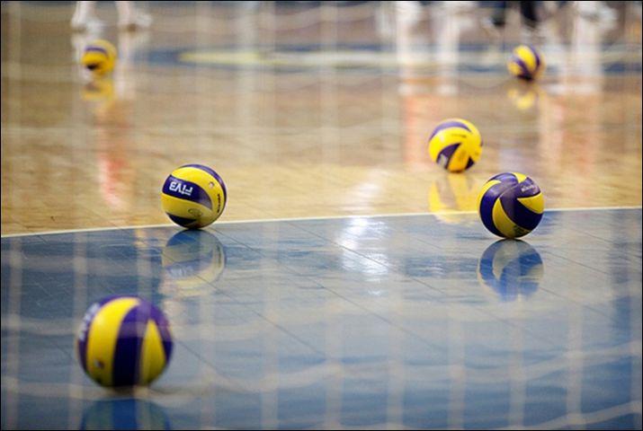молдавские волейболисты, востребованы