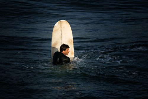 john whitney guild, доски для серфинга