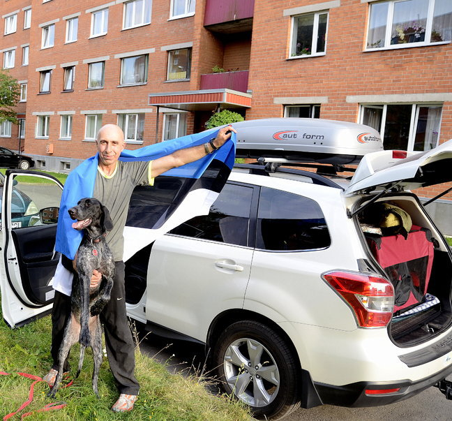 бег с собаками, международные соревнования по каникроссу
