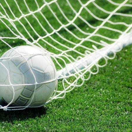 купить Сетка для мини футбола VIXEN 3mm арт.23359 в Кишинёве