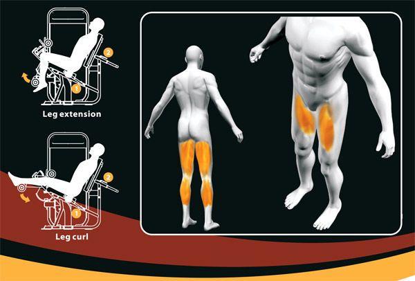 купить Сгибание/разгибание ног  PL 9019 арт.671 в Кишинёве