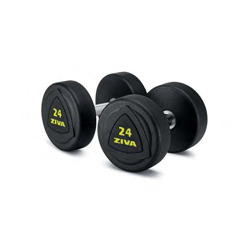 купить Гантели обрезиненные 10 кг ZIVA в Кишинёве