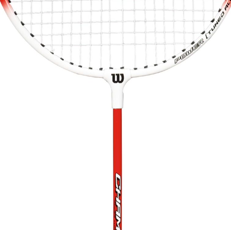 cumpără Paleta badminton WILSON CHAMP90 în Chișinău