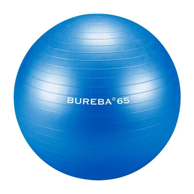 cumpără Medi Bureba 65 blue (fitball 65cm) în Chișinău