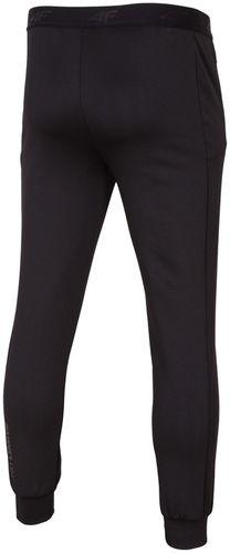 купить 4F Мужские спортивные брюки SPMTR003 в Кишинёве