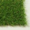 Ландшафтная декоративная трава газо Jakarta 30