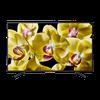 "купить Televizor 49"" LED TV SONY KD49XG8096BAEP, Gray в Кишинёве"