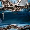 Geanta CARPISA Sarpe/Albastru bs451601S17