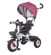 cumpără MamaLove tricicletă Rider în Chișinău