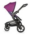 купить Coccolle Детская коляска Girasole 3 в 1 в Кишинёве