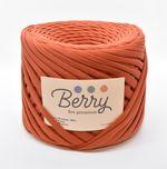 Berry, fire premium / Cărămiziu