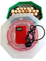Инкубатор с устройством вращения яиц и термометром ERT-MN 9054 / INC3 (41 куриное яйцо или 74 перепелиные яйца)