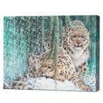 Алмазная мозаика + роспись по номерам 40х50 см Снежный барс YHDGJ75516