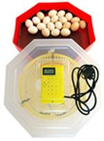 Электрический инкубатор с термометром ERT-MN 9051 / INC4 (60 куриных яиц или 150 перепелиных яиц)