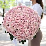 Букет из 101 светло розовой розы 70-80 см