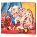 Игривый котенок, код GA74125