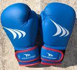 Перчатки боксерские 10 oz Yakimasport Shark 100343 (4848)