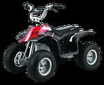Электрический квадроцикл Razor Dirt Quad, Black