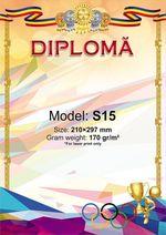 Диплом A4 Sport S15 (4748)