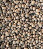 10-20 mm Argilă Expandată (Cheramzită)