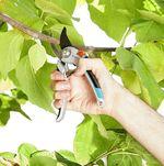 Ножницы садовые Gardena Comfort (8906-20)
