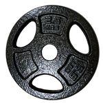 Диск металлический 2.5 кг d=30 DeG (1462)
