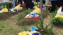 Ex-ministra Sănătății: De Paștele Blajinilor, fiecare acasă