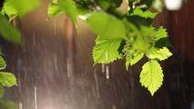 Meteo 25 aprilie 2021: Ploi de scurtă durată și temperaturi de +17 °C