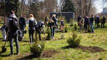 Verde.md: Plantarea e în toi la Chișinău cu Siberian Wellness Moldova Ⓟ