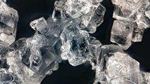 Un animal a revenit la viaţă după ce a fost îngheţat 24.000 de ani