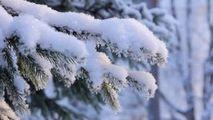Meteo 12 ianuarie 2021: Vine frigul. Zonele în care vor cădea ninsori